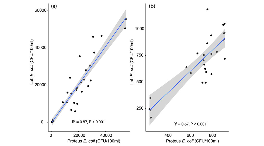 Relationship between the Proteus measurement of E. coli and laboratory measurements for all samples.